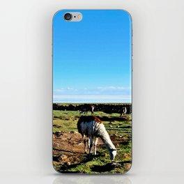Llamas at the Salt flats iPhone Skin