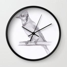 Blue Jay drawing Wall Clock