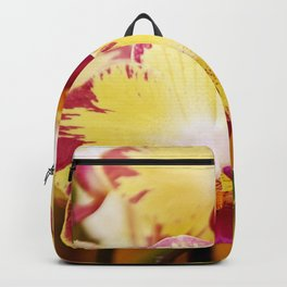 Close up Orchid #8 Backpack