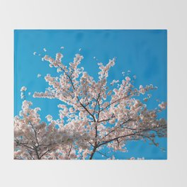 Cherry Blossoms in Washington, DC Throw Blanket