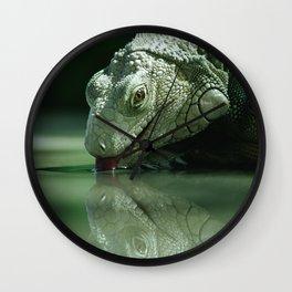 Drinking Iguana Wall Clock