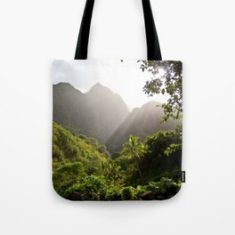 Maybe like it once was Tote Bag