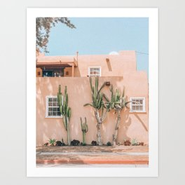 Pink House With Cactus Art Print