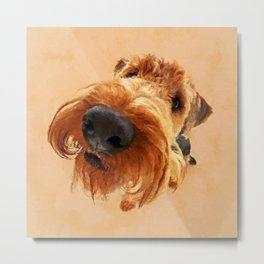 Funny  Airedale Terrier Metal Print