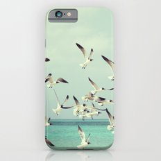 Seagulls in Flight iPhone 6s Slim Case