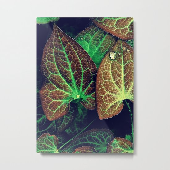 Plant Art, Simply Leaves Metal Print