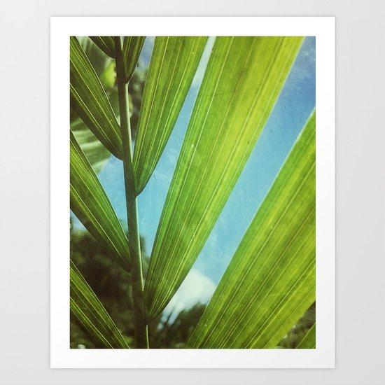Tropical Outlook Art Print