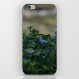 Hedges iPhone Skin
