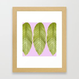 Three large green leaves on a pink background - vivid colors Framed Art Print