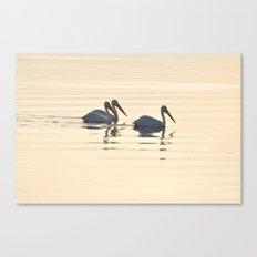 WHITE PELICANS ON THE SALTON SEA Canvas Print
