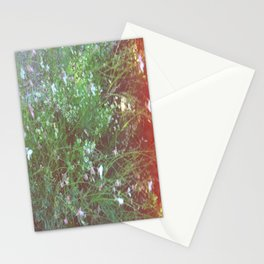 FLOWERS IN THE BRUSH Stationery Cards