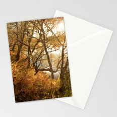 November falls Stationery Cards