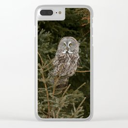 Pine Prince Clear iPhone Case