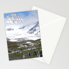 King Penguins at St. Andrew's Bay Stationery Cards
