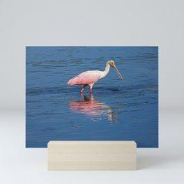 Roseate Spoonbill at Ding II Mini Art Print