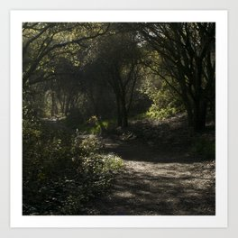 Path 2 Art Print