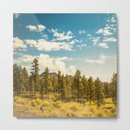 sequoia national park Metal Print