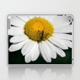 Hungry Bumble Bee Laptop & iPad Skin