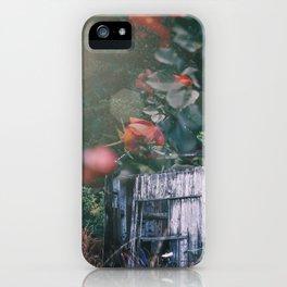 Abandoned Roses iPhone Case
