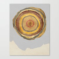 tree rings Canvas Prints featuring Tree Rings by Rachael Shankman