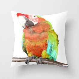 Vector Style Harlequin Macaw On A Perch Throw Pillow