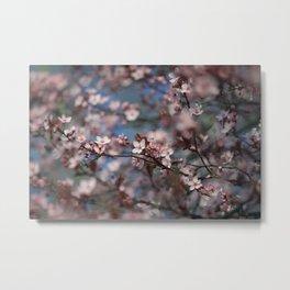 Spring Breeze Metal Print