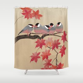 Java Sparrows in Japanese Maple Tree Shower Curtain