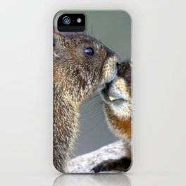 Watercolor Marmot 20, Forest Canyon Tundra, RMNP, Colorado, Gotcha! iPhone Case