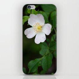 White Flower Bush iPhone Skin