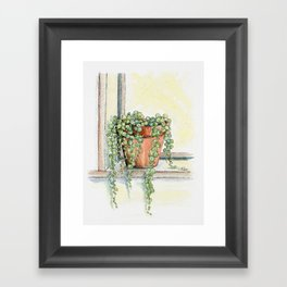 String of Pearls Plant, Still Life Framed Art Print