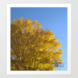 Fall Day in New York Art Print