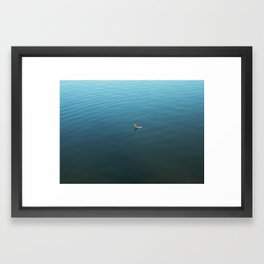 Feather on Water Framed Art Print