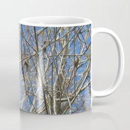 Crisp Cold Florida Morning Coffee Mug
