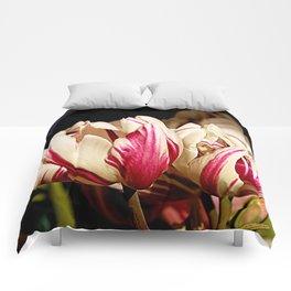 1 Lip, 2 Lips, 3... Comforters