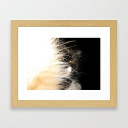 Fluffy Calico Cat Framed Art Print