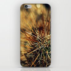 Desert's Defence iPhone & iPod Skin