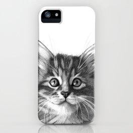 Maine Coon kitten G114 iPhone Case