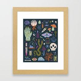 Curiosities Framed Art Print