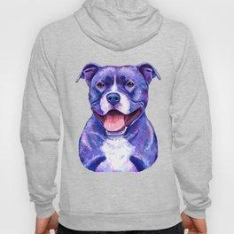 Colorful American Pitbull Terrier Dog Hoody