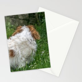 Cavalier King Charles Spaniel Dog Stationery Cards
