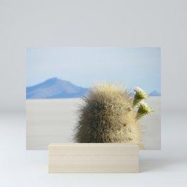 Cactus flower Mini Art Print
