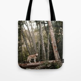 Husky in Forest Tote Bag