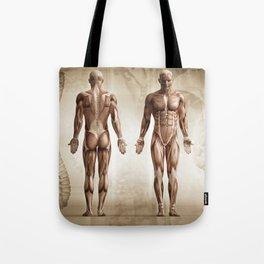 human anatomy digital render Tote Bag