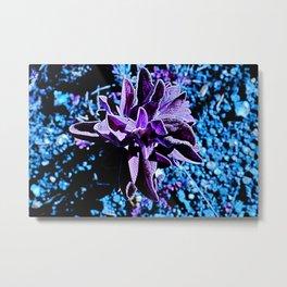 Indigo purple succulent plants alien planet Metal Print