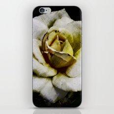 Solo Rose iPhone & iPod Skin