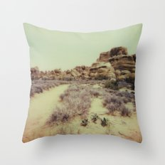 Arches National Park - Polaroid Throw Pillow