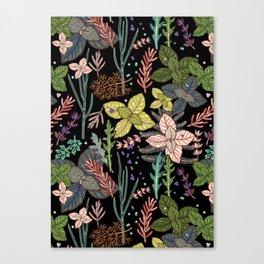 mysterious herbs Canvas Print