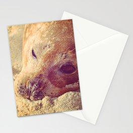 Sleepy Seal Stationery Cards