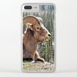 Smiling Bighorn Mountain Sheep Clear iPhone Case