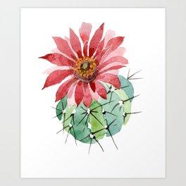 Cactus Watercolor Red Flower Cactus Art Print
